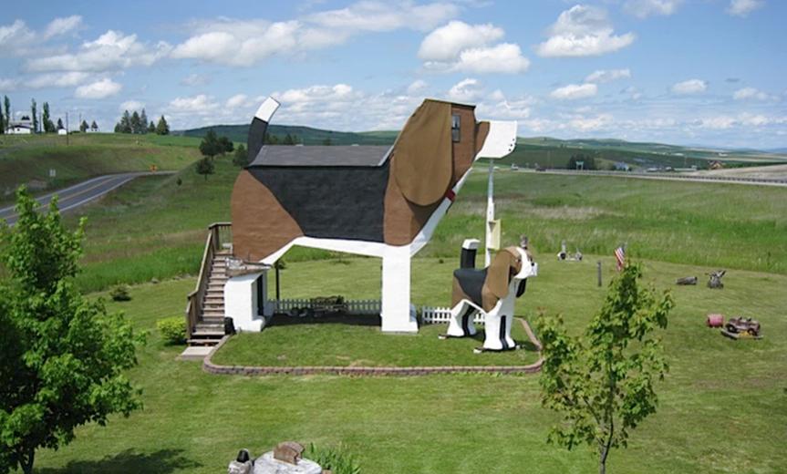 Dog Hund Themenhotel